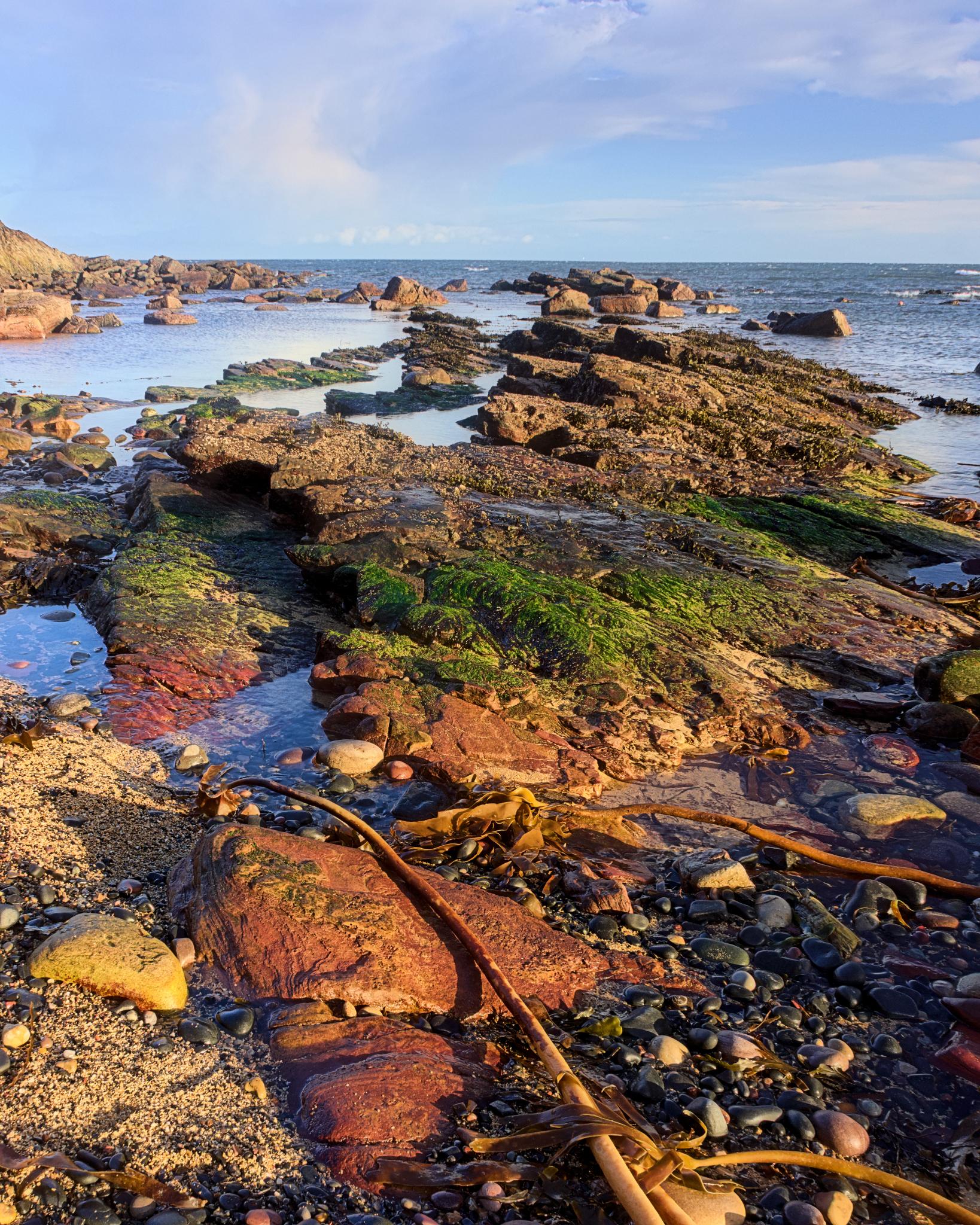 Jaggy Coastline (2)