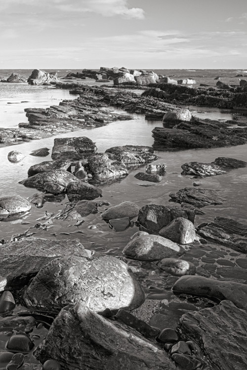 Crail Harbour Rocks (3, black and white)
