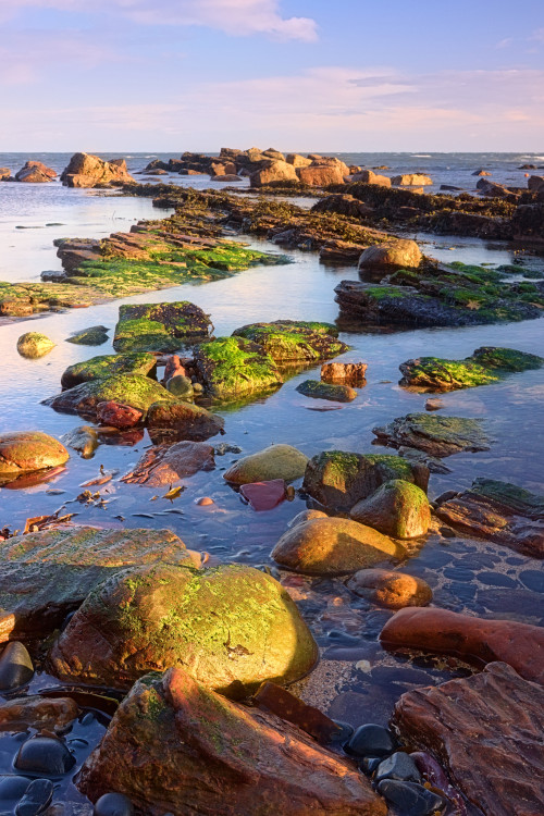 Crail Harbour Rocks (3)