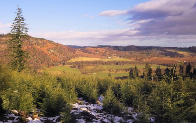 A view from Birnam Hill looking East: to the left, Newtyle Hill in the Highlands; along the base of the hill is the Highland Boundary Fault line.