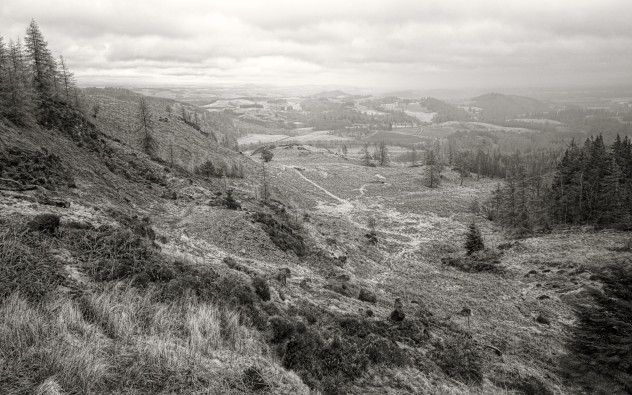 A few outcrops of slate from previous quarrying activity on Birnam Hill. The Highland Boundary Fault runs a hundred yards to the right of this shot, emerging in the middle distance and turning right at the foothills of the distant hills.