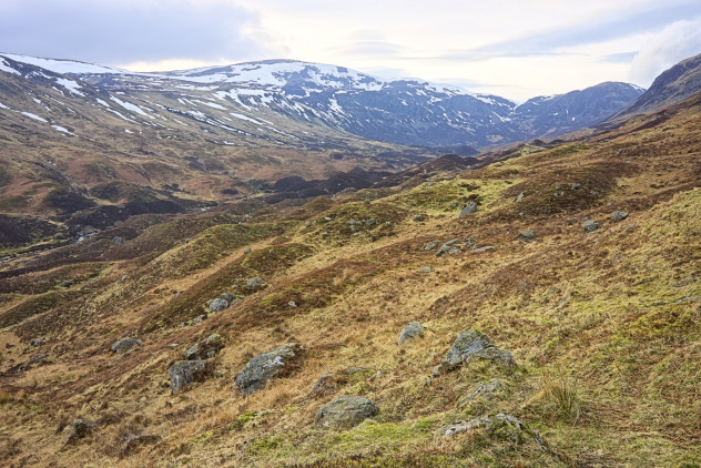 A collection of glacial morraine hillocks at the far end of Loch Turret