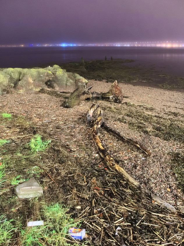 Tree branches washed-up on the shores of the River Tay, Newport-on-Tay.