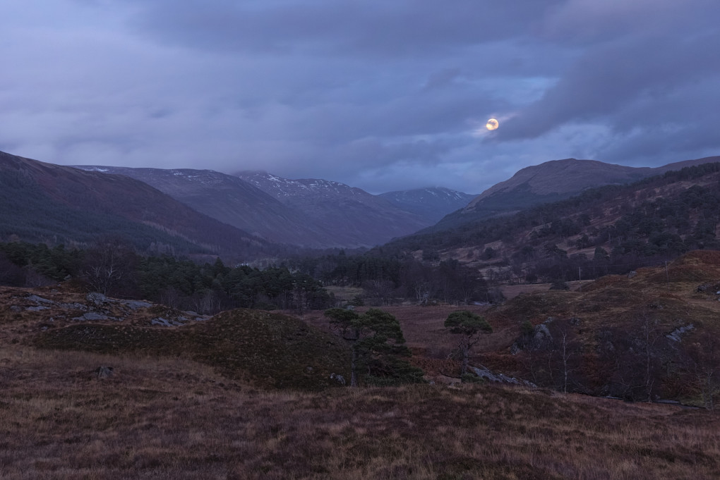 An absolute gift of a photo. Dusk was falling fast as I drove back along the small road; as I rounded a corner I saw a clear view to the bright rising near-full moon along the glen, complete with a couple of boulders (one to include in the photo, another one to clamber quickly up to get it).
