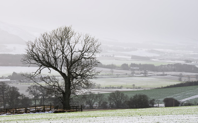 Landscape above Forteviot on a snowy winter day.