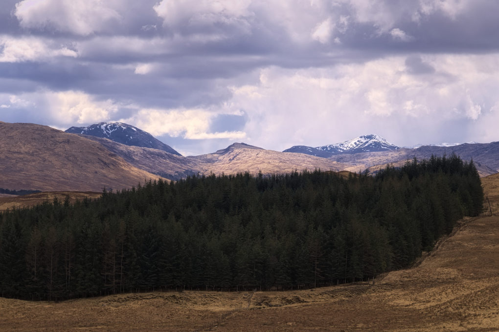 A classic view from the obvious viewpoint above Loch Tulla - lovely light on the middle-distant hills and precipitation over Beinn Eunaich and Ben Cruachan beyond.
