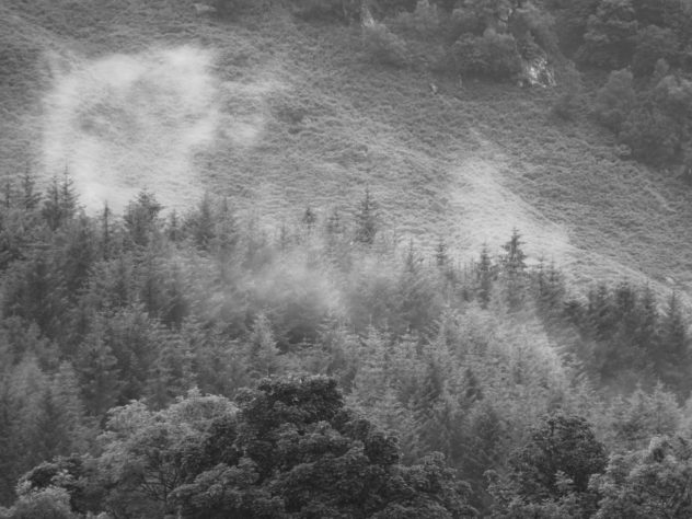 Small clouds of mist above the forests on the slopes of Bioran Beag