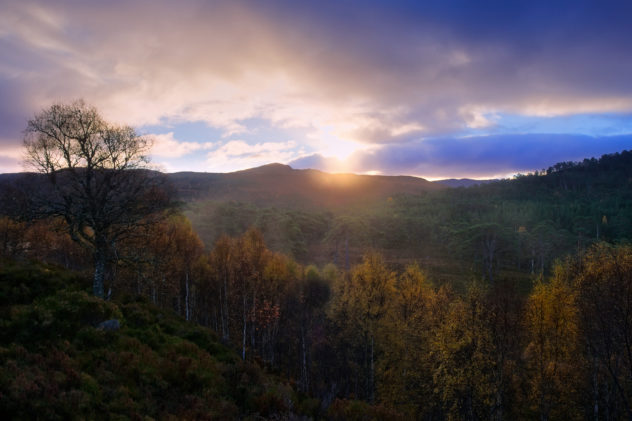 A beautiful autumn sunrise at my Nice Place - above the Caledonian Forest at Glen Affric, trees exhaling morning mist, sun rising behind Creag Dhubh.