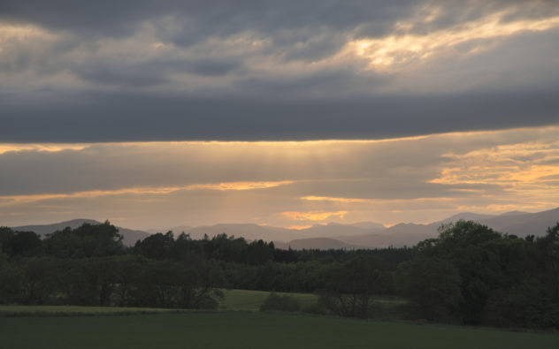 A quick snap of the late evening light.