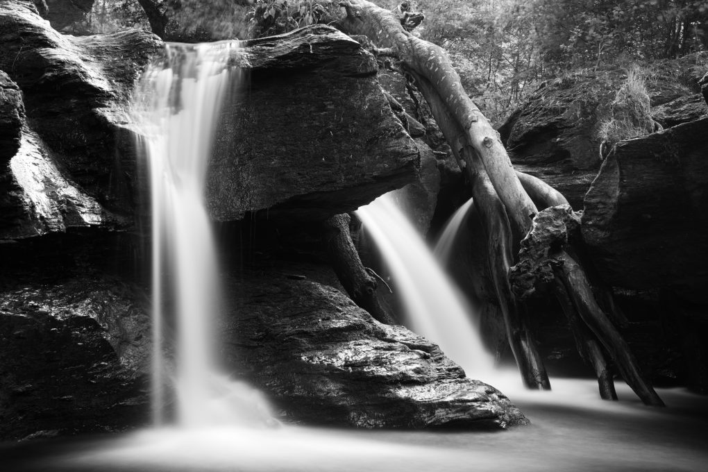 Detail of the waterfall at Edinample flowing around fallen tree branches through the gorge.
