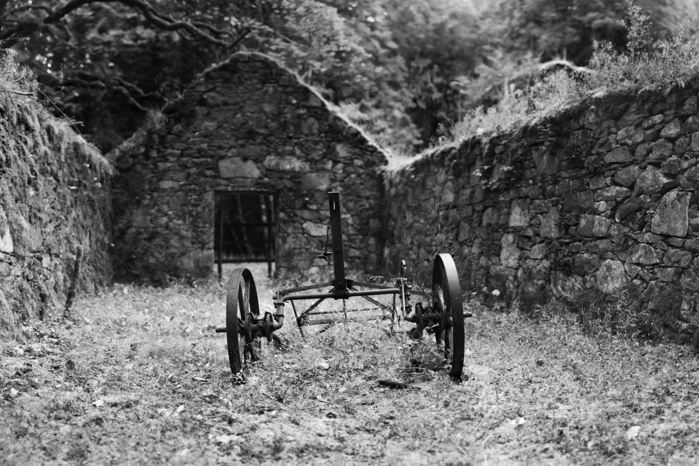 A photo that's been many years in the making. Having discovered this farm implement in a disused ruin on a photo-walk, I've been meaning to revisit and deploy the bokeh-panorama technique. This is 100 frames (2.4GPixel!) using the Helios 58mm f/2 lens, stitched in Affinity Photo where the overlap reduced it to 260MPel. Pleasantly the bokeh is now noticeable, keeping the base of the wheel rims sharp but letting the far wall recede into a blurry distance.