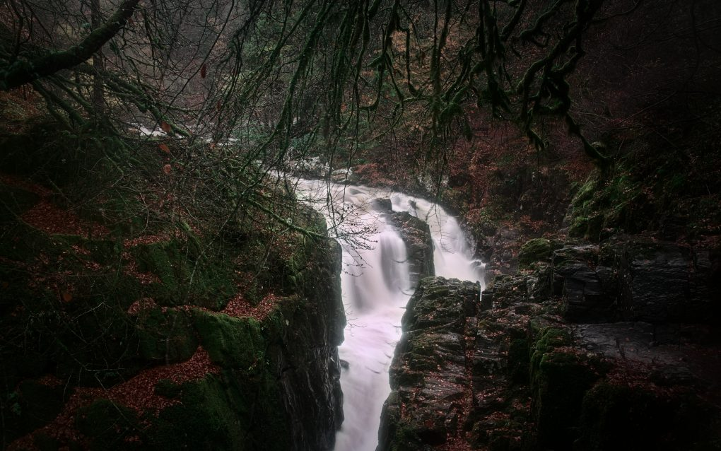 A classic view of the Black Linn waterfall in the River Brann at the Hermitage in late autumn colours.
